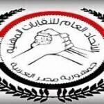 النقابات المهنية فى مصر